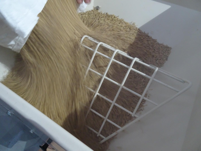 Mout schroten met schrootmolen - foto Brouwerij De Meester